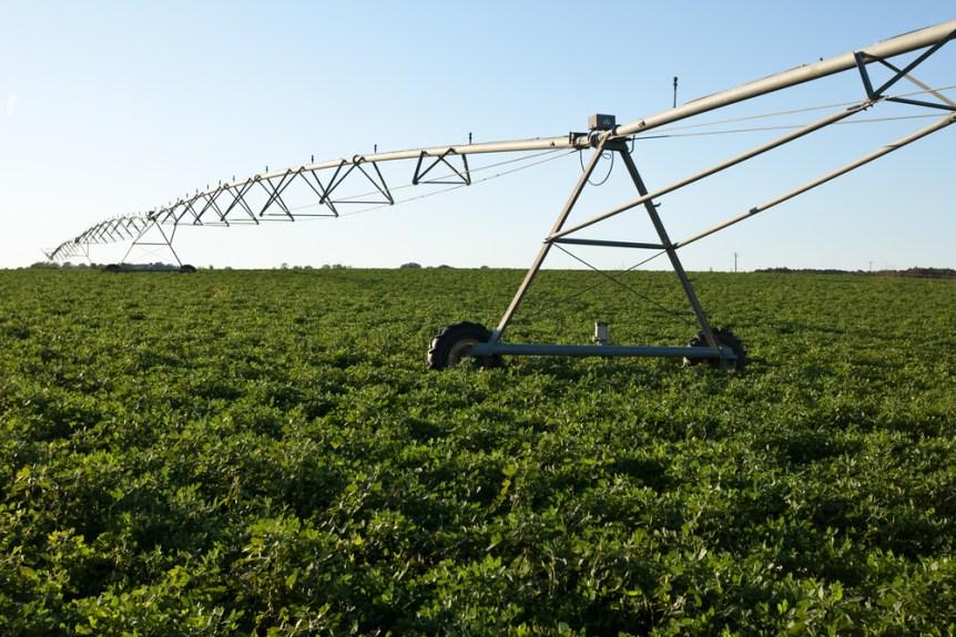 irrigator pro