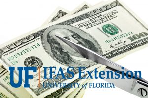 UF-IFAS budget cuts
