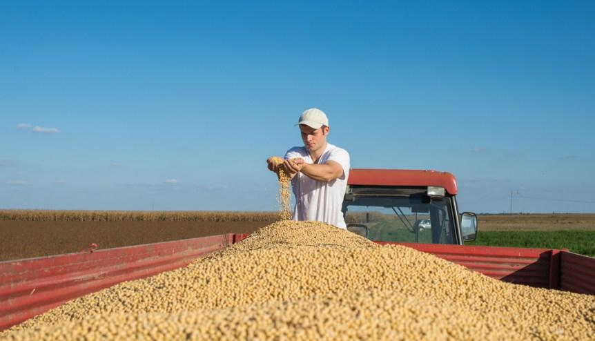 soybean ambassador
