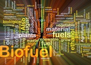 renewable fuel