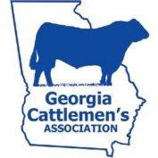 gca convention