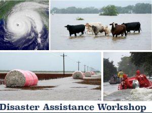 usda disaster assistance