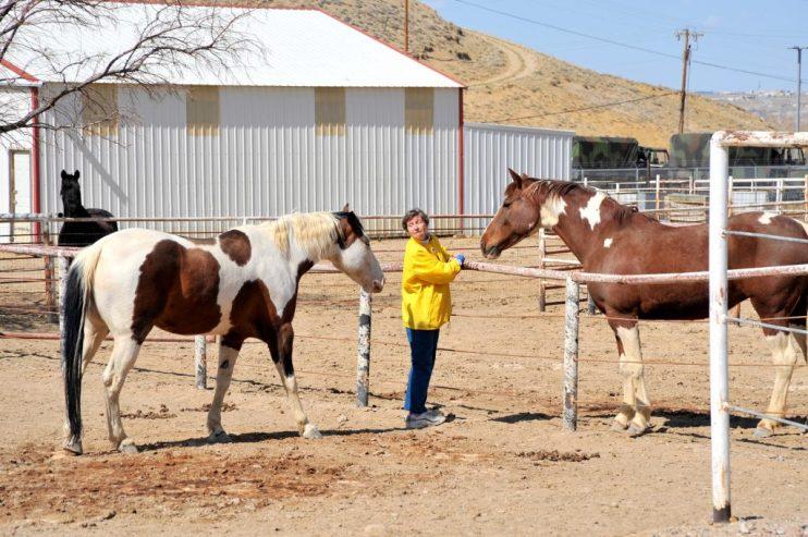 Women Ranchers