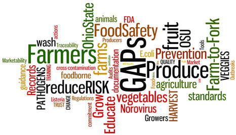 georgia produce safety