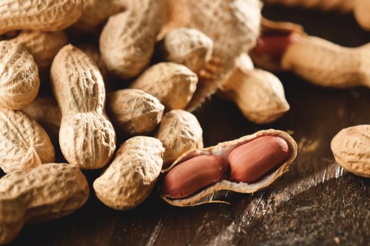 paying homage peanut