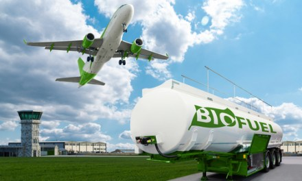 Biofuel Development Policy in Indonesia: A critical review