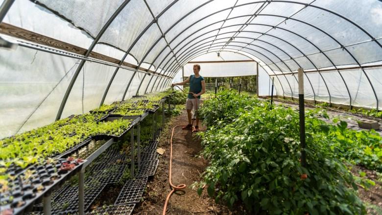 Thatcher Farm (Matthew Gorten)