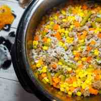 How to Make Easy Homemade Dog Food in an Instant Pot