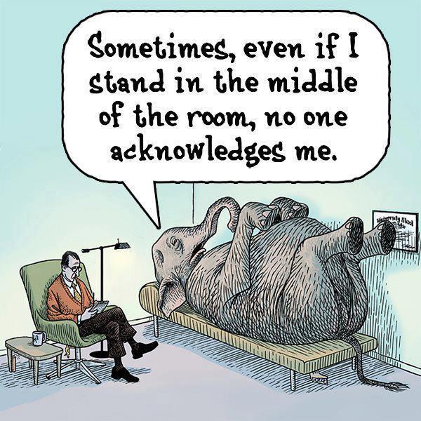 elephant-in-room (1)