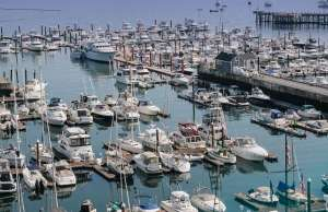 An image of Spring Point Marina