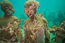 The world's first underwater sculpture gallery on Grenada attracts divers. Photo: Jason deCaires Taylor