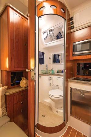 The head and shower, and galley with cooktop, microwave and sink.