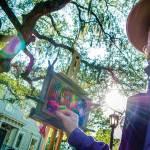 Destination Savannah