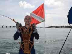 lobster mini season