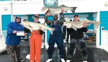 Winter Chesapeake Fishing, rockfish, striped bass