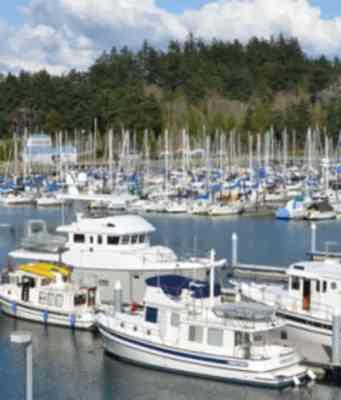 trawlerfest comes to the cheasapeake