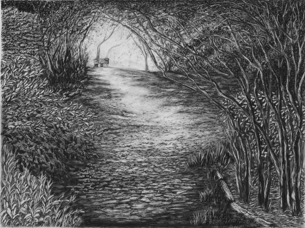 Ron Reekers - charcoal