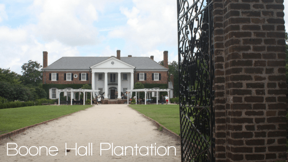 Boone Hall Plantation | Charleston, SC