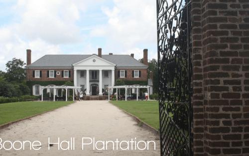 Boone Hall Plantation | Charleston, SC