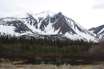 Montana Mountain | Carcross, Yukon