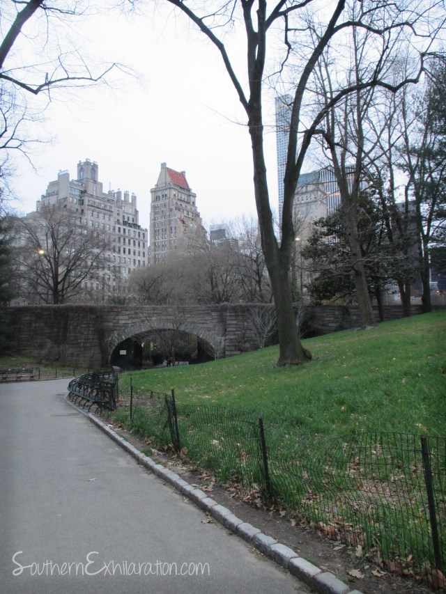 Central Park | New York City