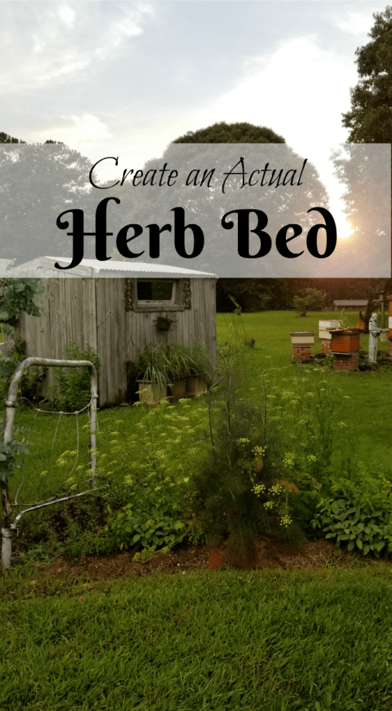 Create an Actual Herb Bed, Bed Frame in the garden