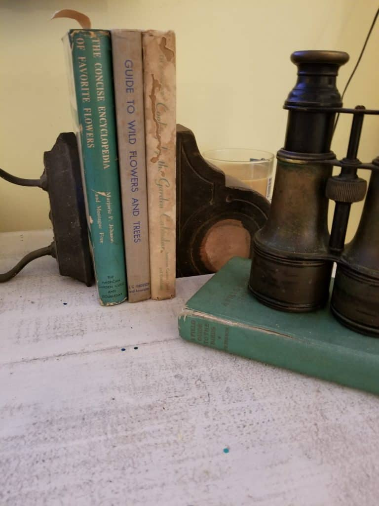 antique iron, antique binoculars, antique books, styling a long table
