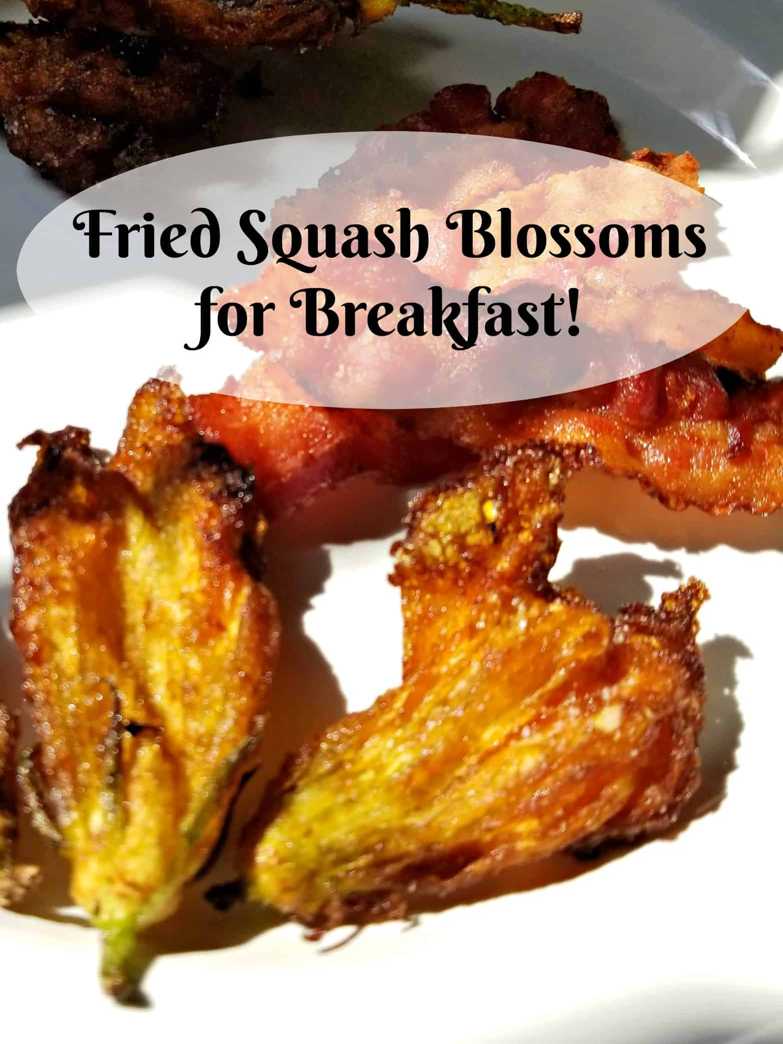 Fried squash blossoms, Using your garden produce