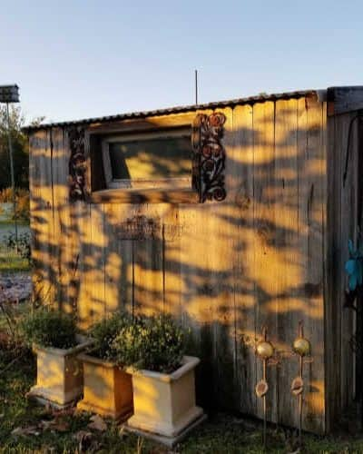 Garden shed lit by early morning sun with first frost glitter