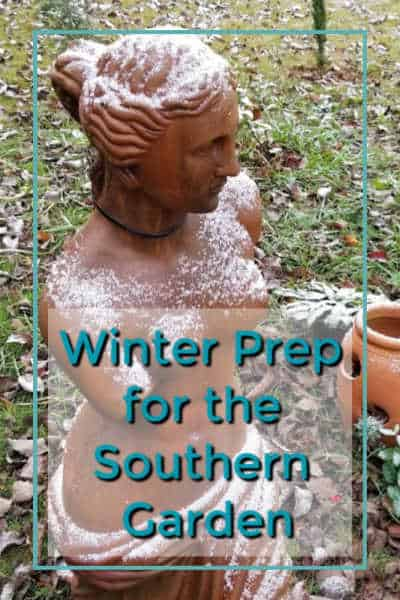 Prepare your southern garden for Winter