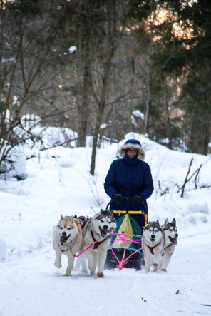 dmitrov-dogsledding-10