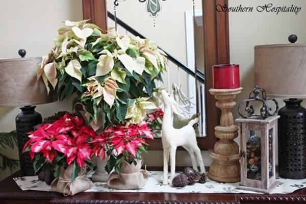 Pretty Poinsettias For Christmas Southern Hospitality
