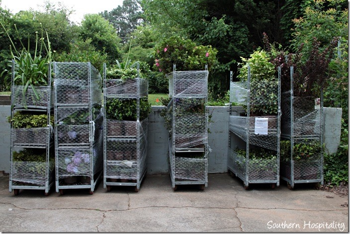 6 racks of plants