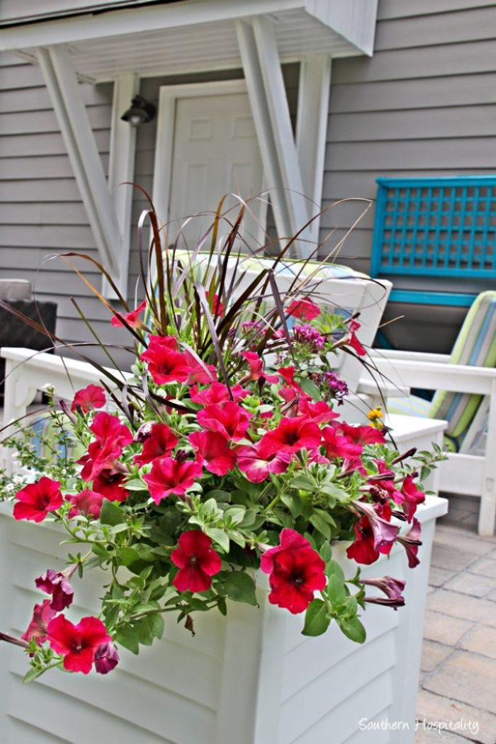 planters on patio
