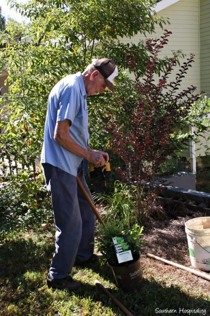 southern living plants20151017_008