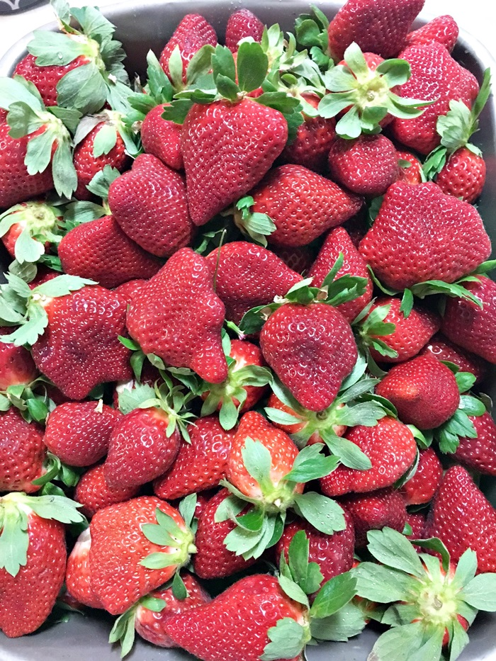 Strawberry Cake strawberries