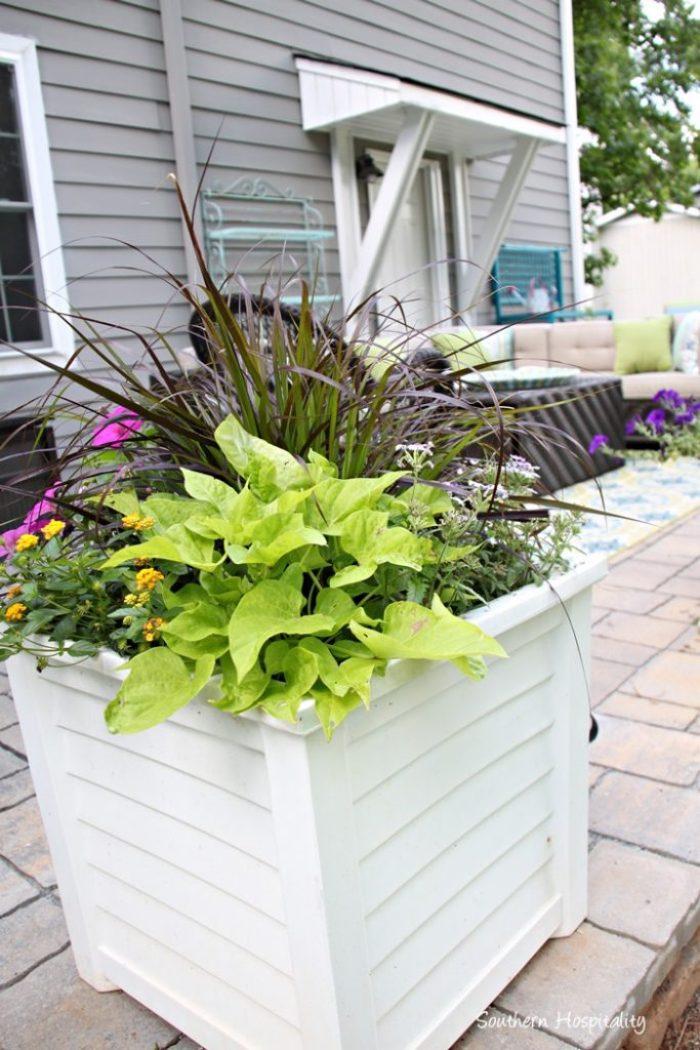 porch and patio 037
