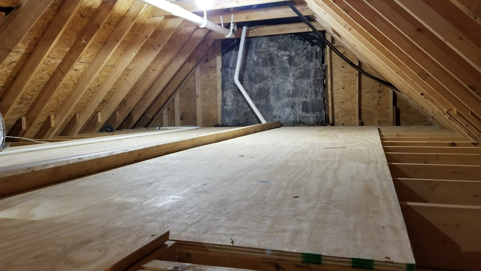 Attic Cleaned and Ready for Encapsulation