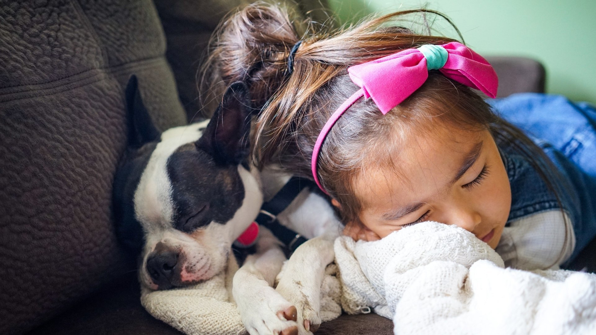 Girl Comfortably Sleeping with Dog on Couch