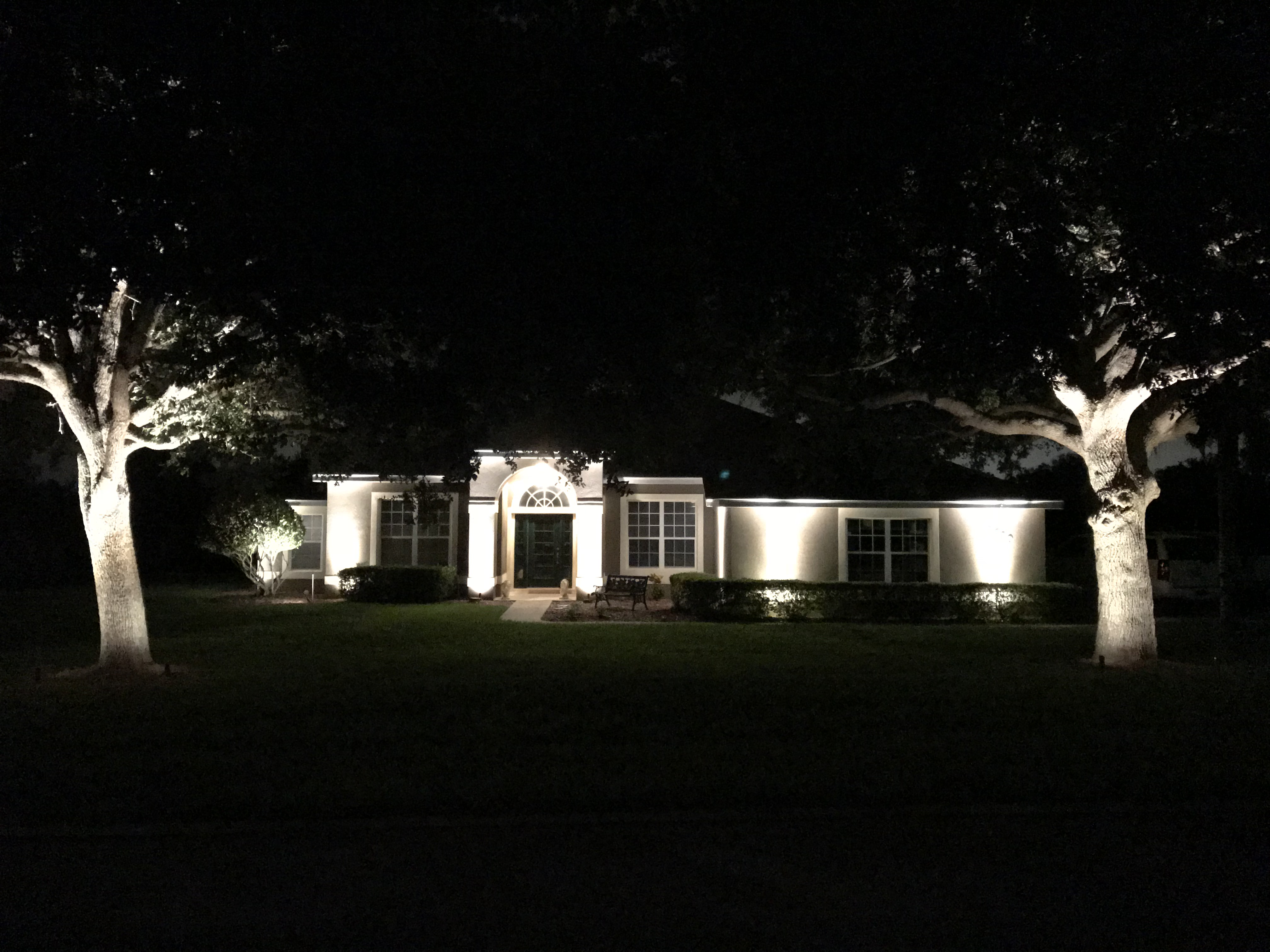 front of house lighting with 2 large trees