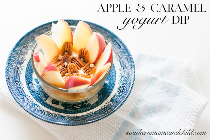 SMC-Caramel-Yogurt-Dip-10