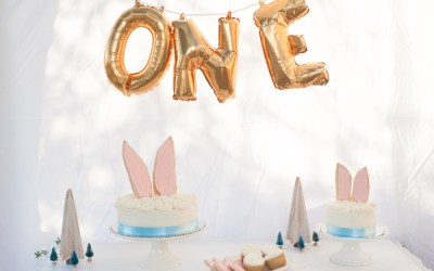 Sully's First Birthday: Woodland Rabbit Birthday Party
