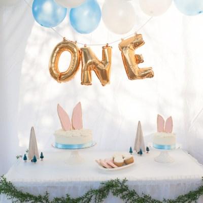 Sully's First Birthday: Woodland Rabbit Birthday Party