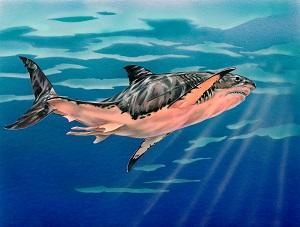 Megalodon-Illustration-by-Tim-Scheirer