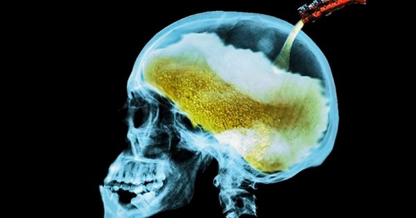 alcohol-and-your-brain
