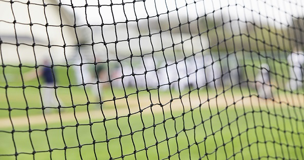 baseball-netting