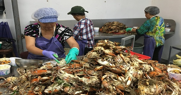maryland-crab-pickers-center-for immigration-studies