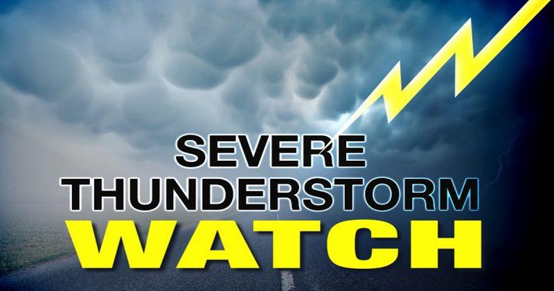 severe-thunderstorm-watch