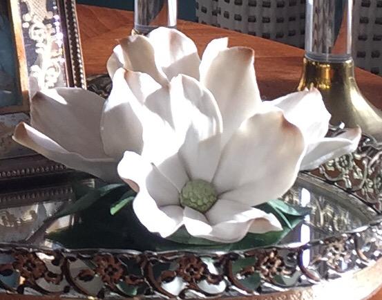 magnolia up close.jpg