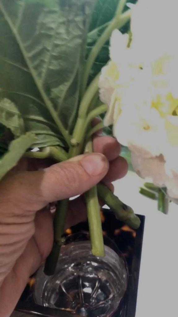 Easy Hydrangea Flower Arrangement Ideas